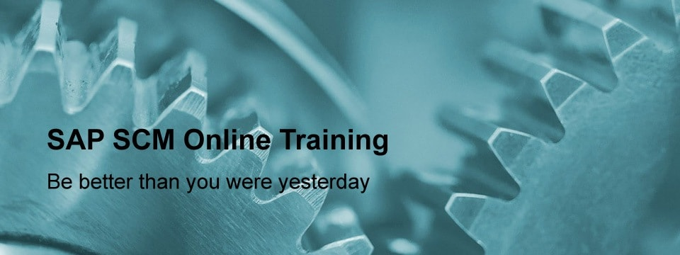 sap scm training / sap apo training