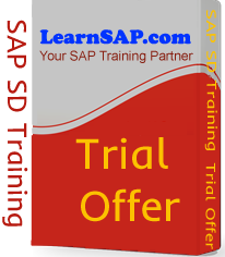 SAP SD Trial